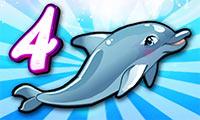 מופע דולפינים 4